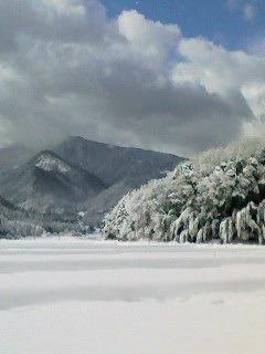 120208_1032~001鹿野雪.jpg